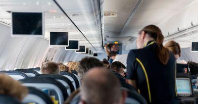 Das führt jetzt eine Airline in ihren Flugzeugen ein