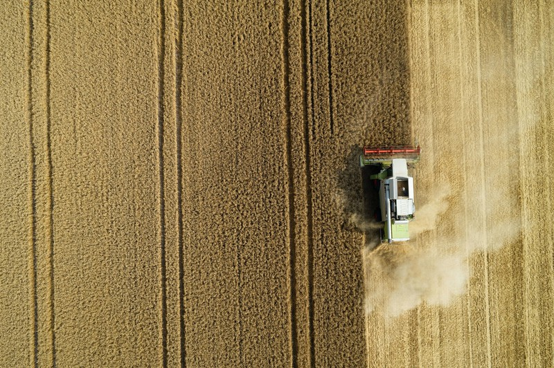 Das Quiz schließt auch landwirtschaftliche Fragen mit ein.