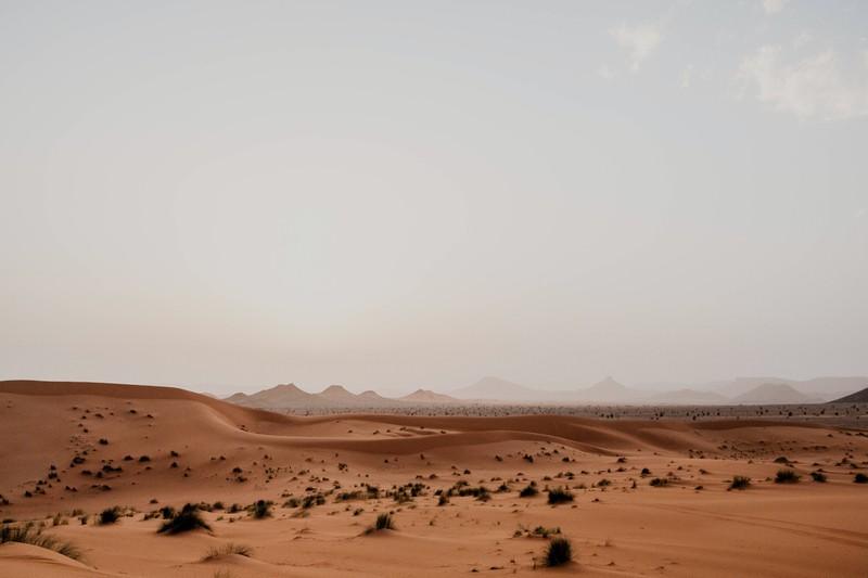 Wir weiten den Geografie-Test weiter aus und fragen dein Wüsten-Wissen ab.