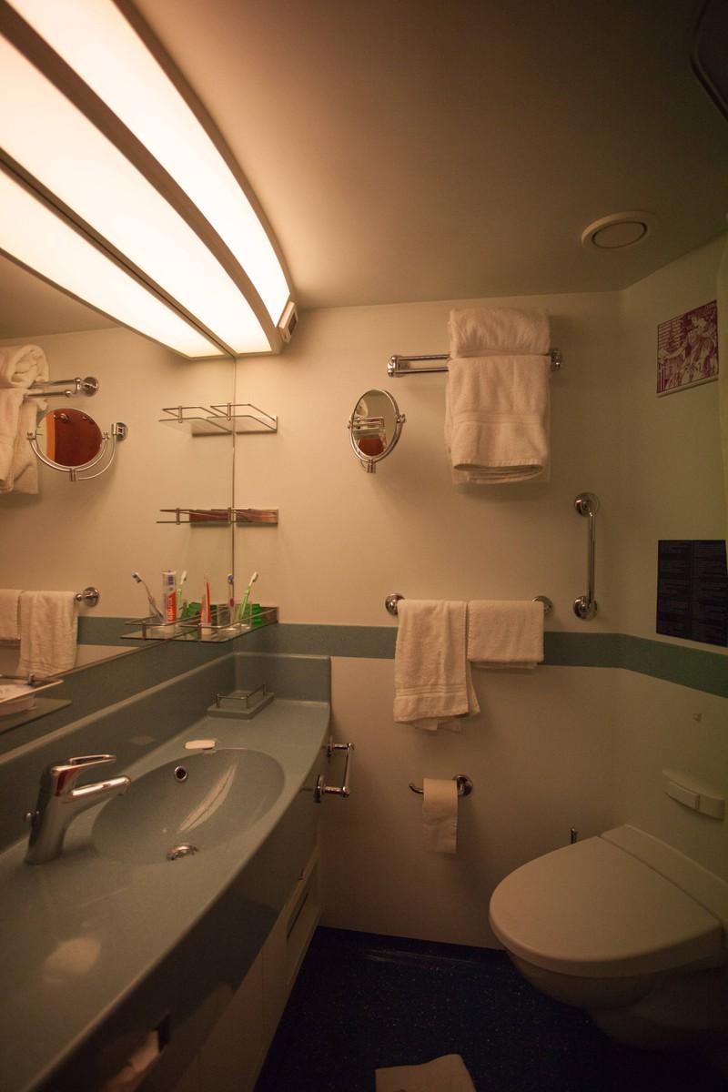 Leider müssen Passagiere von Schiffen auch mit verstopften Toiletten rechnen.