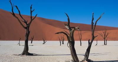 Namibia: Afrika für Einsteiger
