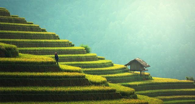 Zehn Insider-Ziele für die nächste Asienreise