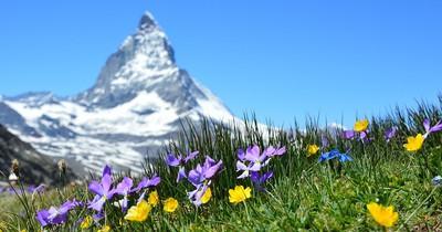 Alpen: Die 10 schönsten Landschaften