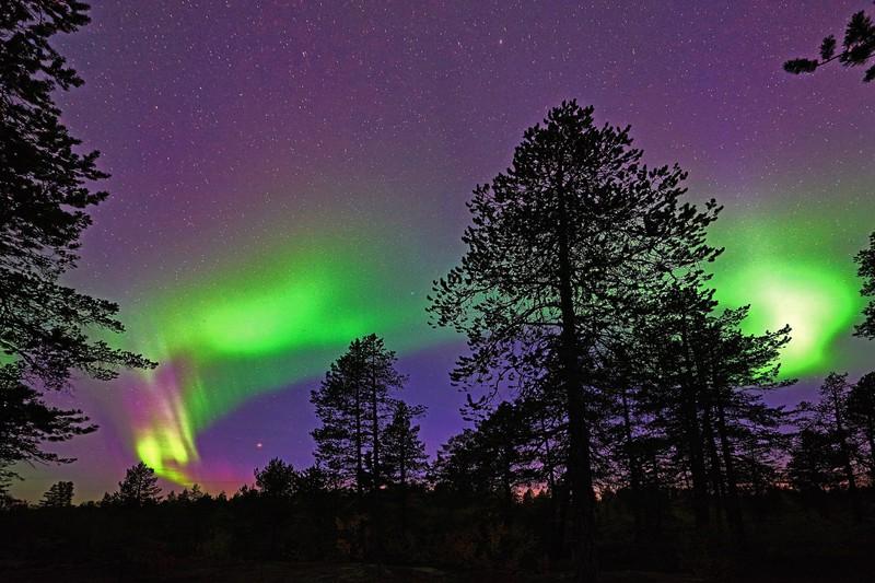 Die Polarlichter sind ein echtes Spektakel, was man mal gesehen haben sollte.