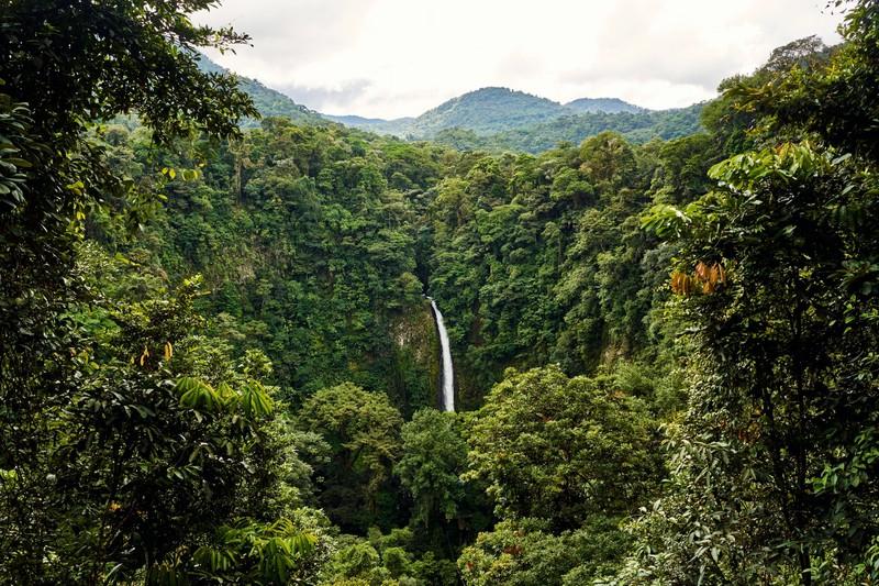 Costa Rica hat viel Natur zu bieten, für die man bereit sein muss.