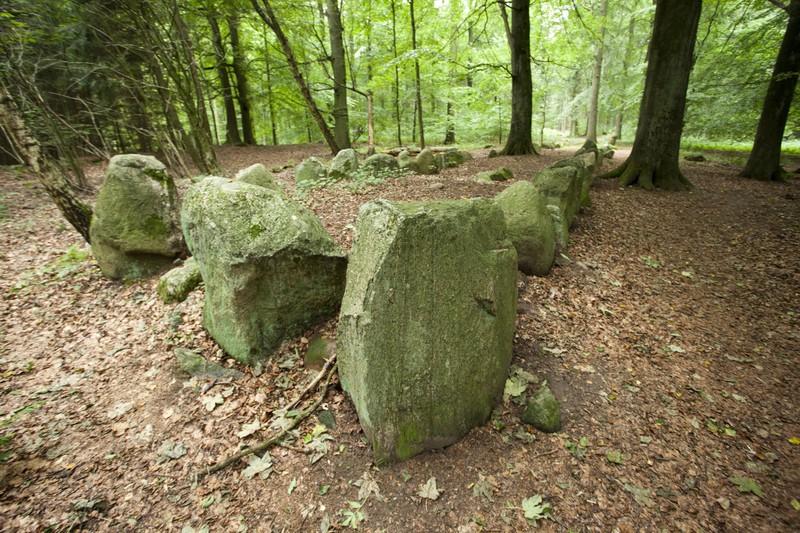 Der Everstorfer Forst in MV ist wegen seiner Steinansamlung bekannt und magisch