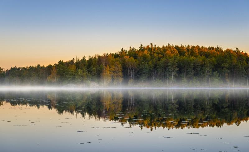 See von Schweden