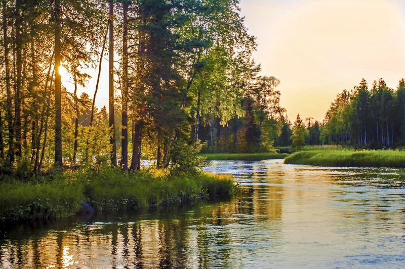 Wildnis in Finnland