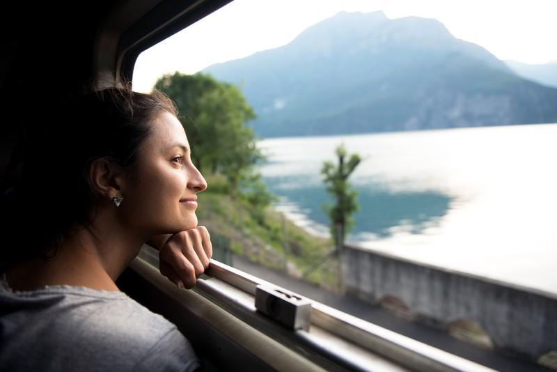 Far schaut aus dem Fenster im Zug