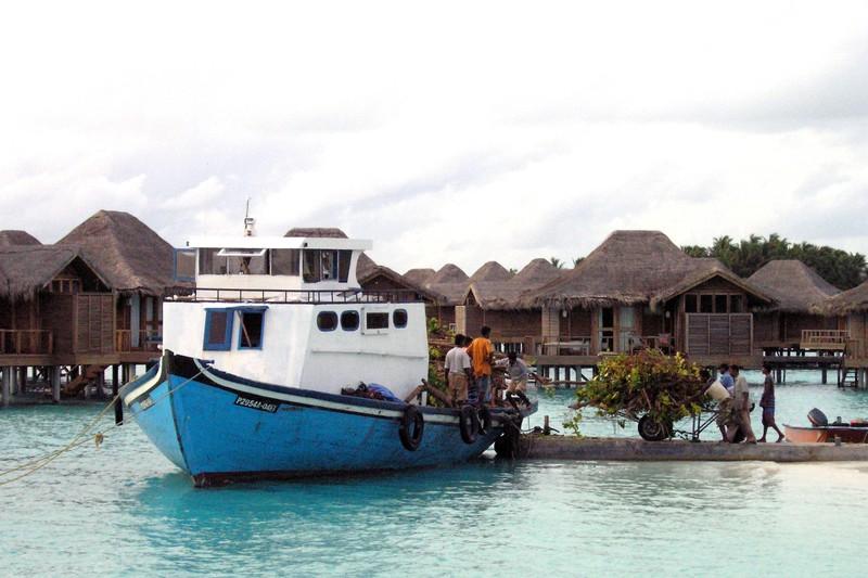 Die Malediven gehören zum Kontinent Asien, wenn du in Erdkunde gut aufgepasst hast, weißt du das.
