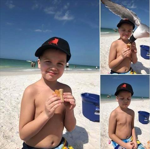 Der Junge wird sich nach der kuriosen Aktion der Möwe nicht mehr so schnell an den Strand trauen.