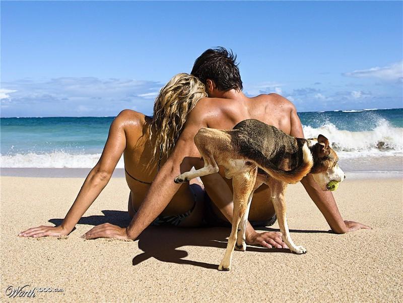 Ein Hund verwechselt ein Urlauberpaar mit einem Busch, was für ein unangenehmes Urlaubsfoto sorgt.