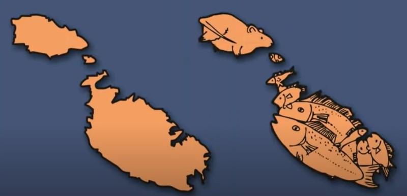 In Malta stecken sogar zwei Bilder: Eine Ratte mit einem Stückchen Käse und ein Fischschwarm.