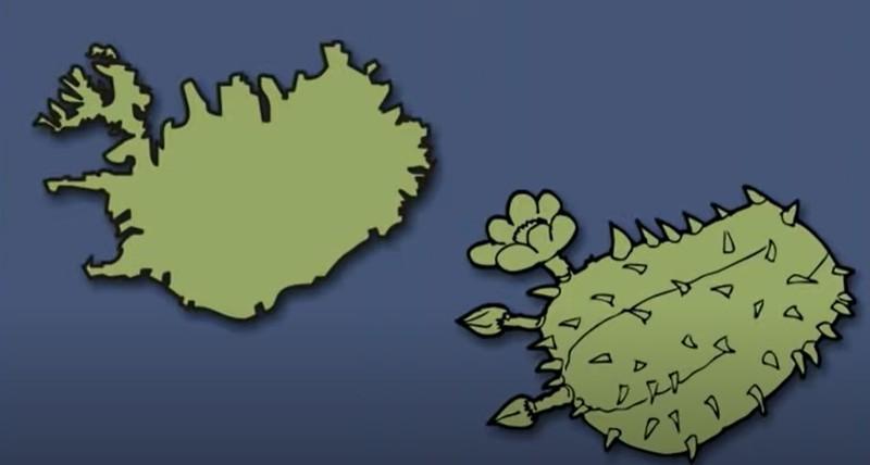 Wurde Island mit dem Kaktus-Vergleich nicht perfekt getroffen?
